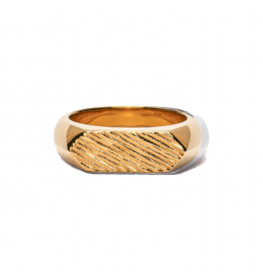 Frederik IX Studio Mini Brushed Hexagon Ring Gold-02
