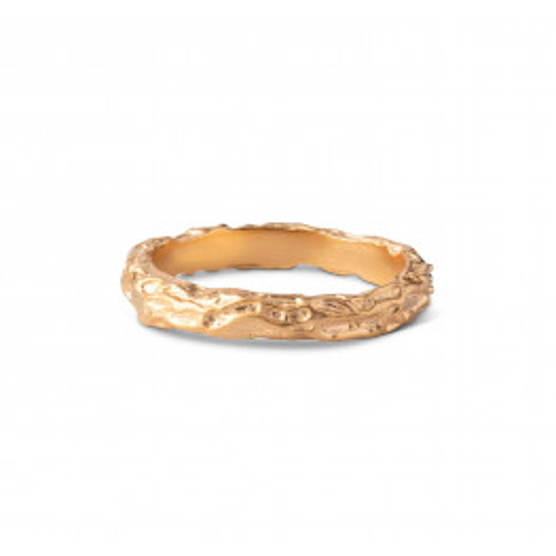 Enamel Gaia Ring Forgyldt-01