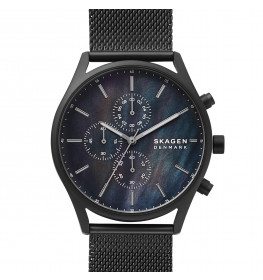 Skagen Holst SKW6651-011