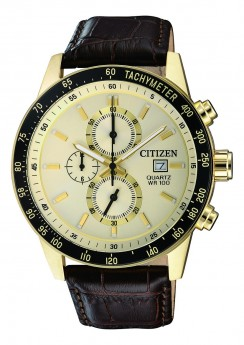 Citizen Eco-Drive AN3602-02A-20