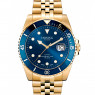 Dissing Diver Gold/Blue